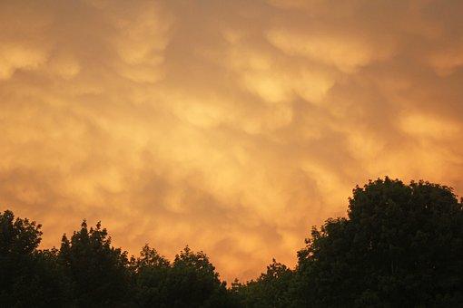 Yellow, Clouds, Cloudscape, Trees, Nature, Landscape