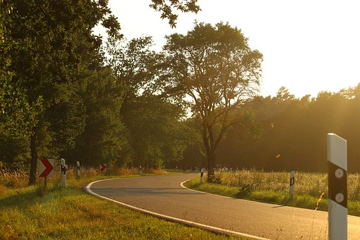 Road, Curve, Landscape, Summer, Asphalt, Route, Nature