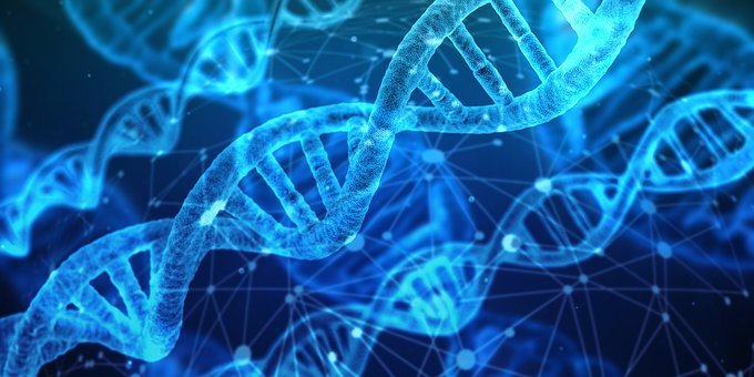 Dna, Network, Biology, Chemistry, Medical, Research