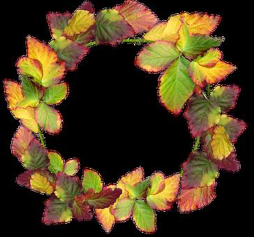 Wreath, Leaves, Autumn, Fall, Nature, Garden, Frame