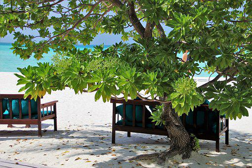 Maldives, Sand, Resort, Ocean, Beach, The Sun