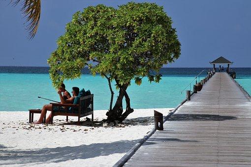 Maldives, Paradise, Beach, Ocean, Sit, Idyllic, Selfie
