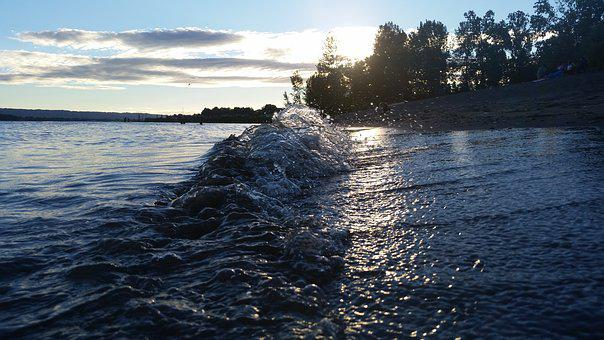 Water, Wave, Crashing Trees, Sun, Light, Background