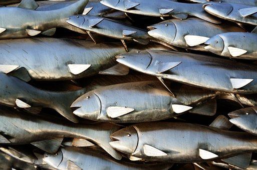 Fish, Sculpture, Metal, School Of Fish, Artwork