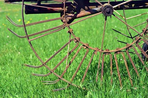 Hay Tedders, Agriculture, Rural, Machine, Rust, Wheel