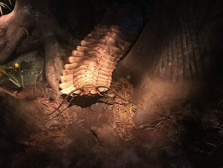 Creepy, Jungle, Nightmare, Prehistoric, Giant