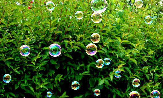 Soap Bubbles, Colorful, Plant, Summer, Fly