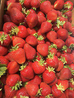 Strawberry, Fruit, Harvest