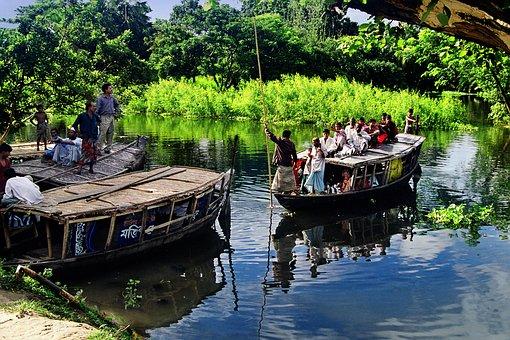 Bangladesh, Forest, Boat