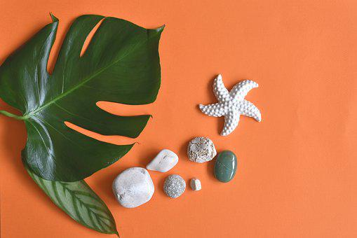 Summer, Pebbles, Starfish, Leaf, Decoration, Flat Lay