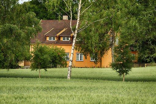 House, Building, Farm, Nature, Landscape