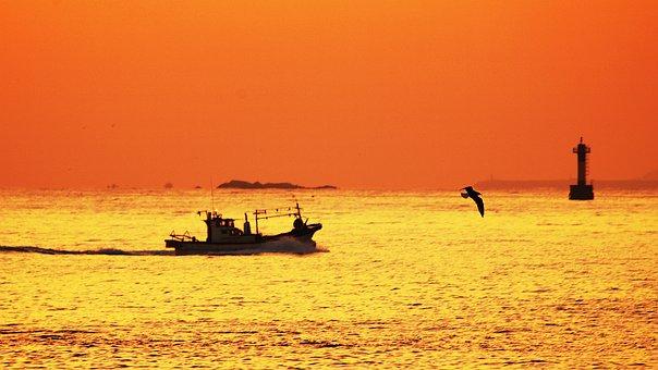 Sea, Sichuan Airport, Sunrise, Fisherman, Fishing