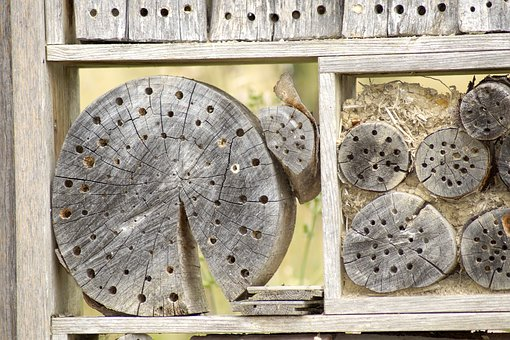 Insect Hotel, Insect House, Insect Box, Perforated