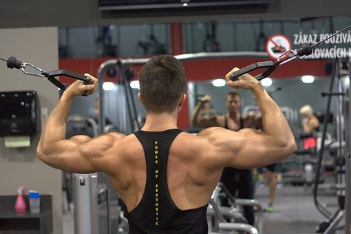 Fitness, Man, Boy, Back, The Reinforcement, Exercise