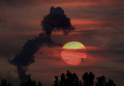 Sun, Cloud, Ball, Puppy, Play, Optical Illusion, Nice