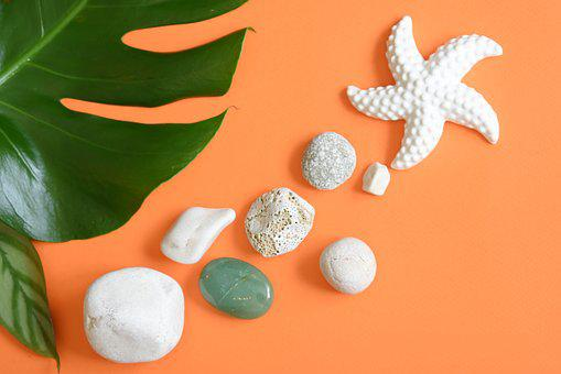 Starfish, Pebbles, Stones, Summer, Design, Flatlay