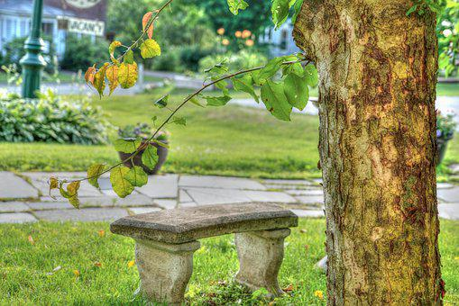 Vermont, Green Mountains, Bench, Decoration, Landscape