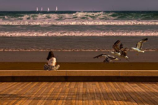 Landscape, Seaside, Nature, Side, Water, Evening