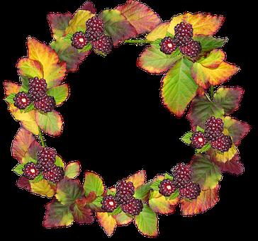 Leaves, Wreath, Frame, Border Autumn, Fall, Berries