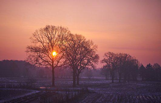Sunrise, Country Life, Agriculture, Field, Nature, Sun