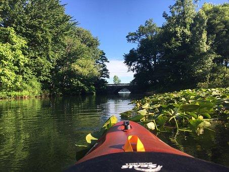 Kayak, Bridge, River, Nature, Water, Summer, Kayaks