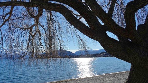 Lake, New Zealand, Nature, Water, Scenery, Landscape