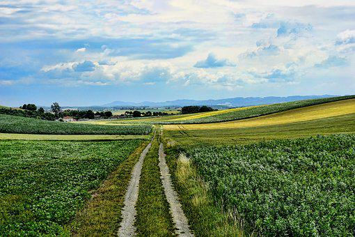 Nature, Landscape, Lane, Clouds, Sky, Scenic, Panorama