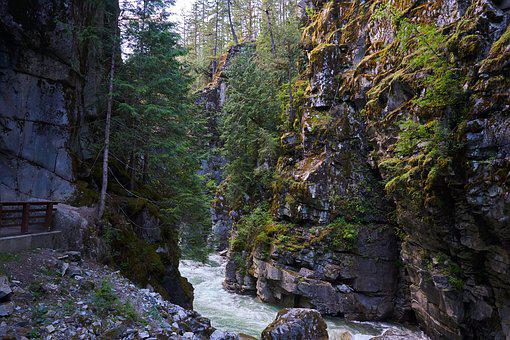 River, Rock, Nature, Water, Landscape, Creek, Forest