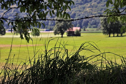Fencing Of Pastures, Meadow, Alpine, View, Grass, Wind