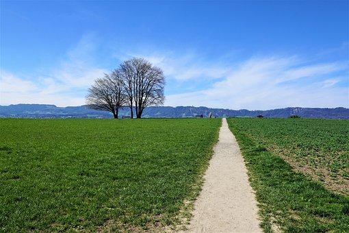 Landscape, Zollikon, Zurich, Canton, Switzerland