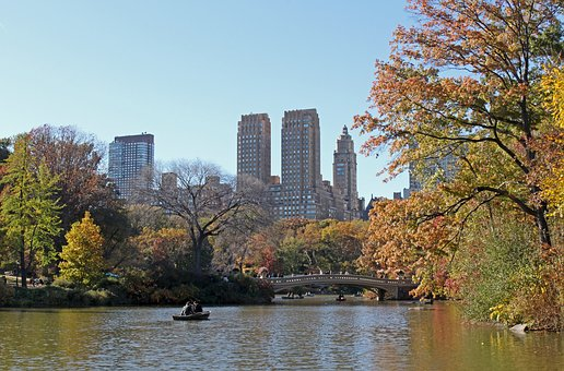 Central Park, Park, Garden, New York, Nature, Landscape