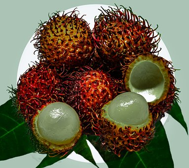 Rambutan, Fruit, Tropical, Edible, Hairy, Spiny