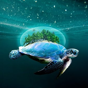 Turtle, Beach, Sand, Ocean, Island, Tropical, Aquatic