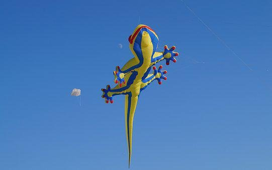 Dragon, Shackle Dragon, Kite, Sky, Moon, Air, Wind