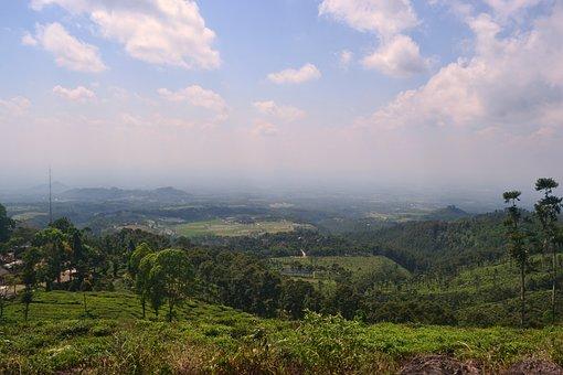 Landscape, Tea Gardens, Nat, Nature, Green, Sky, Grass