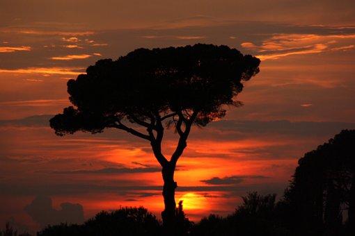 Sunset, Sun, Sky, Landscape, Nature, Twilight, Sunrise