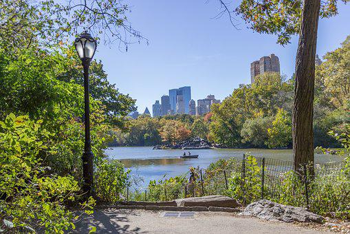 Central Park, New York, Park, Skyscrapers, Buildings