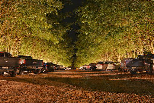 Cars, Parking Lot, Park, Trees, Long Exposure