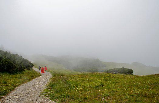 Alps, Fog, Rainy, Sudden, Change, Weather, Alpine