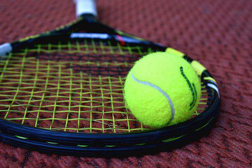 Tennis, Racket, Tennis Ball, Sport, Court, Exercise