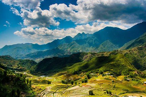 Sapa, Vietnam, Farm, Terraces, Terraced Fields, Terrace