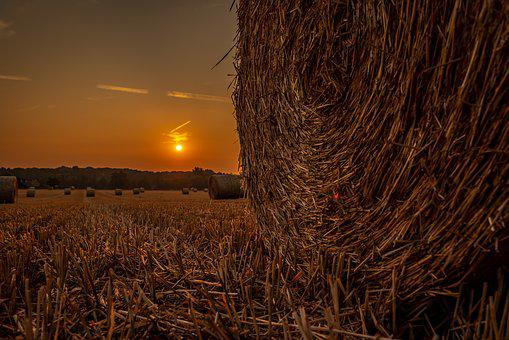 Sun, Field, Pasture, Bale, Straw, Cereals, Agriculture