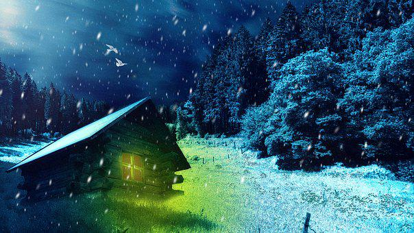 Winter's Tale, Snow, Trees, Cabin, Log, White, Photos