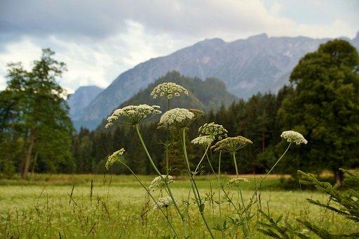 Austria, Alps, Evening, Mountains, Twilight, Scenic
