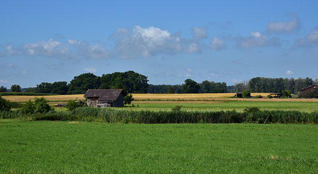 Landscape, Agriculture, Nature, Rural, Summer