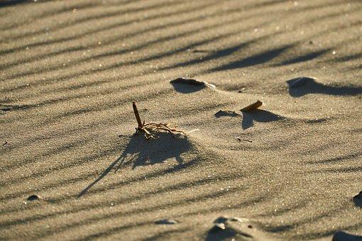Sand, Sea, Wind, Water, Beach, Summer, Nature