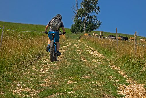 Mountain Bike, Trail, Bike, Cycling, Cyclists