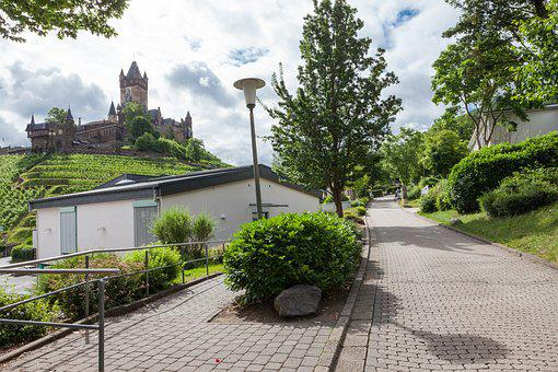 Vineyard, Castle, Vines, Sachsen, Winegrowing