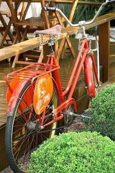 Bush, Bicycle, Bike