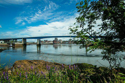 Saint John, Water, Harbour, Bridge, City, Buildings
